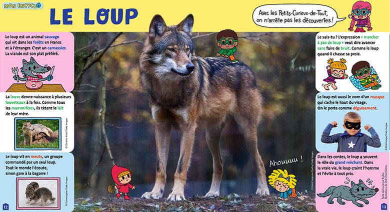 Mon encyclo sur le loup dans Toupie Magazine