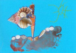Concours Toupie, dessine un bateau en coquillages : martin