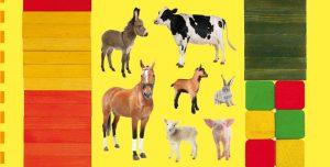 Concours Toupie magazine : créé ta ferme en couleurs !