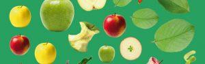 """Concours autocollants """"Crée ton bonhomme pomme"""" avec Toupie magazine"""