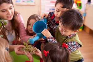 Développement durable école