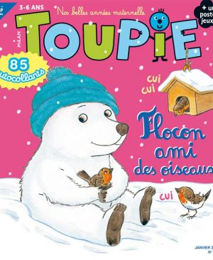 Toupie Janvier 2021